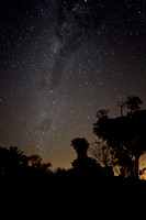 Milky Way over South Africa